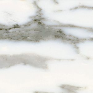 Arabesacto Corchia Marble Tile